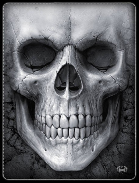 Solemn Skull - Fleece Blanket