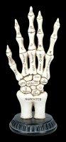 Skeletthand zum Handlesen - Palmistry