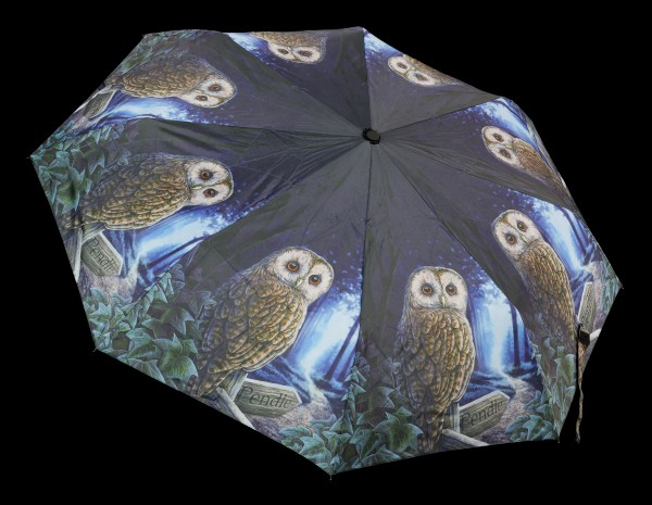 Umbrella with Owl - Way of the Witch
