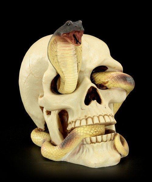 Skull - Cobra winds through the eye
