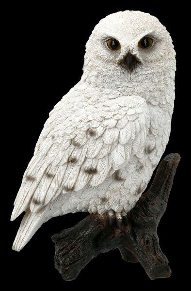 Weiße Schneeeulen Figur auf Ast