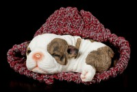 Dog Figurine asleep wrapped in red Cap