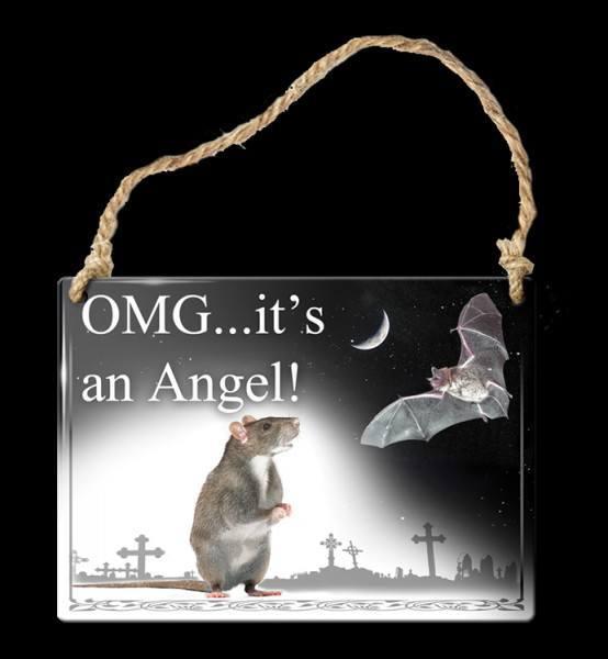 Alchemy Metallschild klein - Omg...It's An Angel!