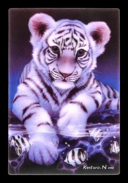 3D Postcard - White Tiger Baby