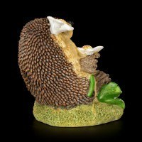 Funny Hedgehog Figurine with Daisies - Flowerspell
