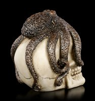 Octopus Skull
