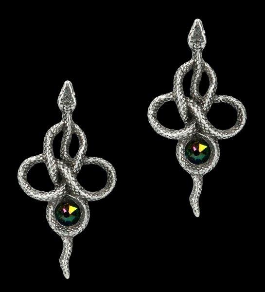 Alchemy Snake Ear Studs - Tercia Serpent
