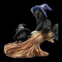 Lustige Hexen-Katzen spielen auf Besen