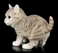 Baby Cat Figurine - American Shorthair playing