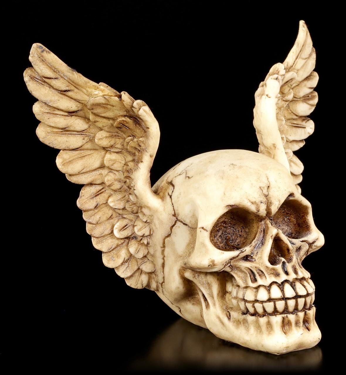 Totenkopf mit Flügeln - Wings of Heaven