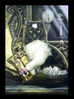 Große Leinwand Katze - Time's Up by Lisa Parker