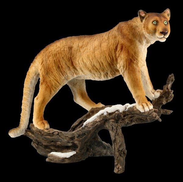 Puma Figur auf Ast