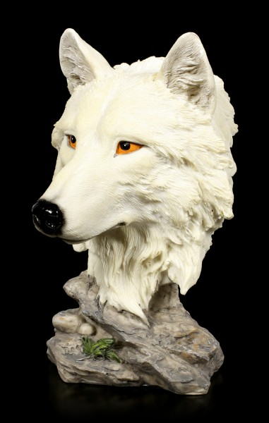 Wolf Bust - Lonely Hunter