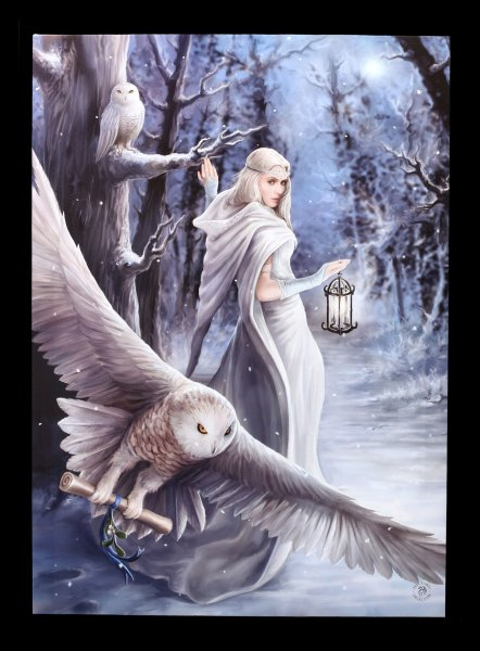 Large Canvas with Owl - Midnight Messenger