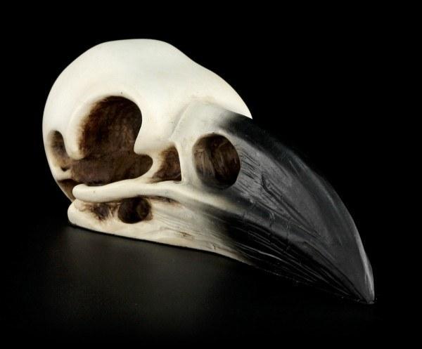 Totenkopf - Raben Schädel