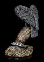 Raven on Skeleton Hand