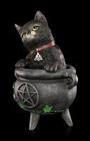 Witches Cat Figurine - Smudge