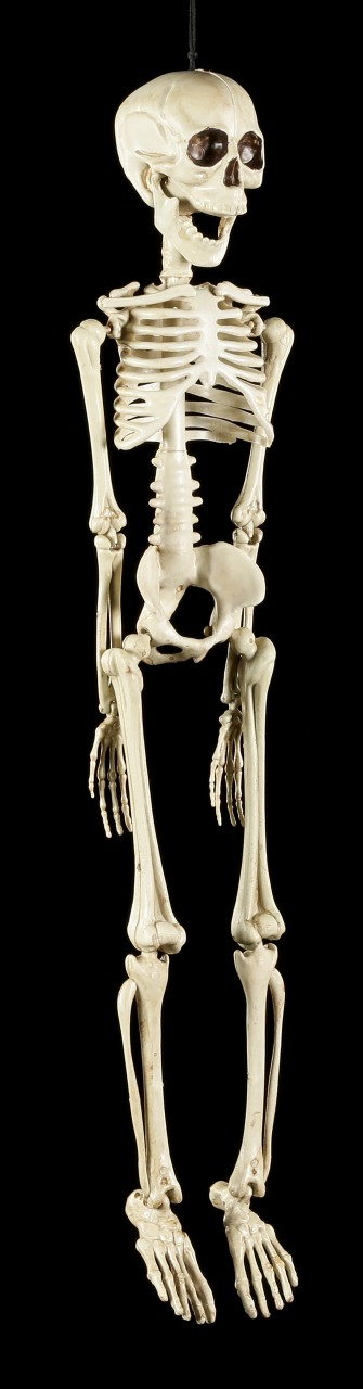 Plastic Skeleton 50 cm