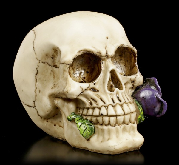 Skull - Rose from the Dead - purple