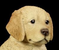 Hunde Figur - Golden Retriever Welpe