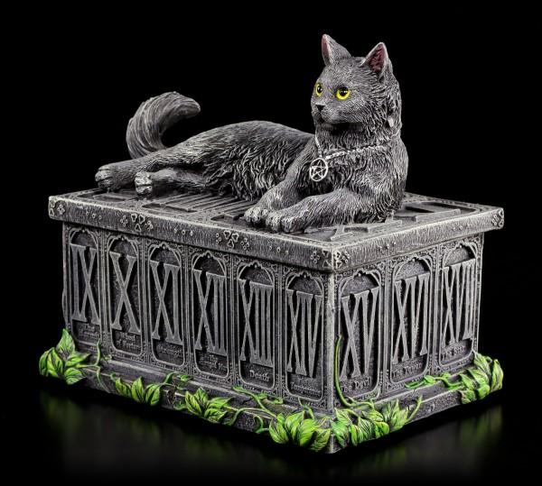 Tarotkarten Schatulle mit Katze - Fortune's Watcher