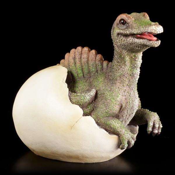Gartenfigur Dinosaurier - Spinosaurus schlüpft