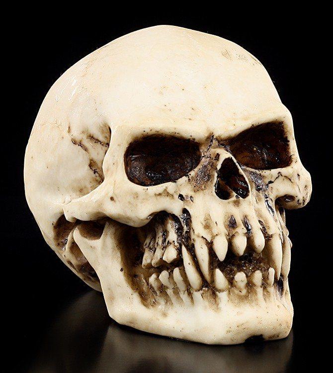 Kleiner Vampir Totenkopf