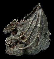 Dragon on Skull - Draco Skull