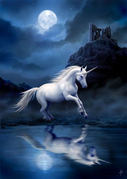 Einhorn Grußkarte Fantasy - Moonlight Unicorn
