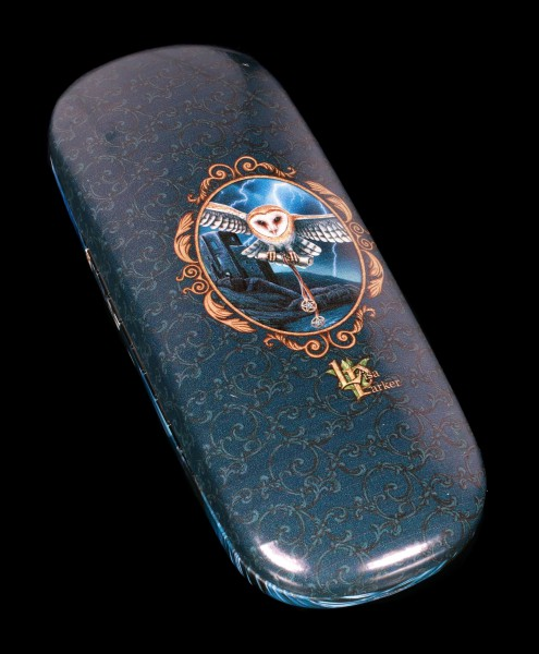 Glasses Case with Owl - The Heart of the Storm