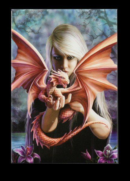 Magnet Fantasy - Dragonkin by Anne Stokes