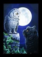 Große Leinwand mit Katze & Eule - Purrfect Wisdom
