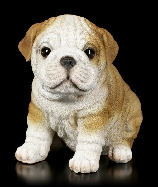 Preview: Dog Figurine - Bulldog Puppy