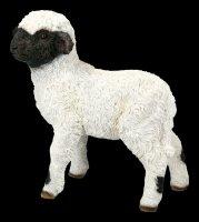 Garden Figurine - Lamb looks interested
