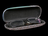 Glasses Case with Cat - A Brush with Magic