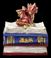 Dragon Box - Dragonling Diaries - red