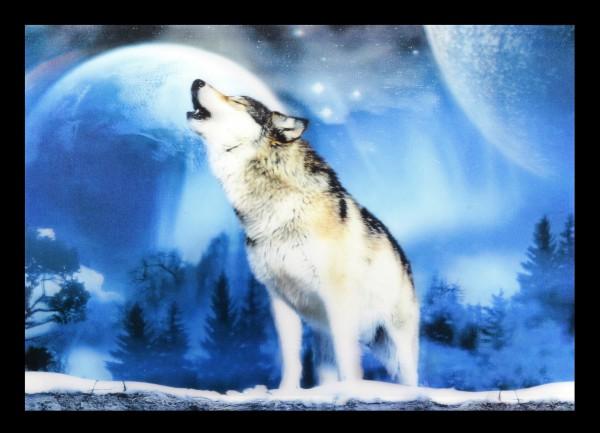 3D-Bild mit Wolf - Winterheulen