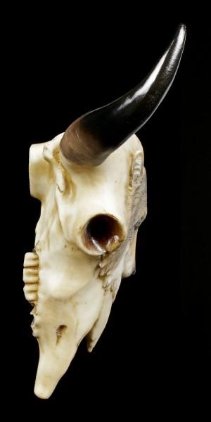 Rinder Schädel mit grauem Wolfskopf - Native Spirit