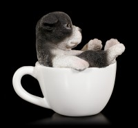 Dog in Cup mini - Boston Terrier Puppy
