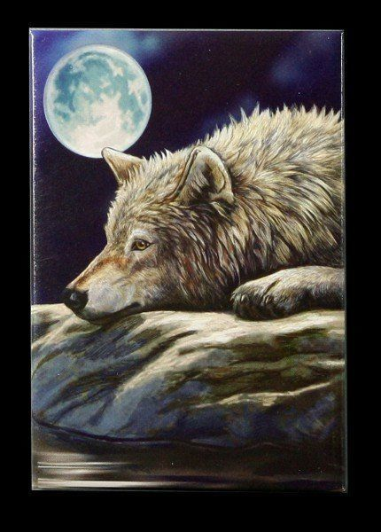 Magnet mit Wolf - Quiet Reflection by Lisa Parker