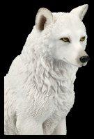 Weiße Wolf Figur - sitzend