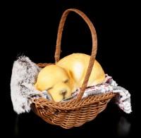 Hunde Figur schlafend im Körbchen