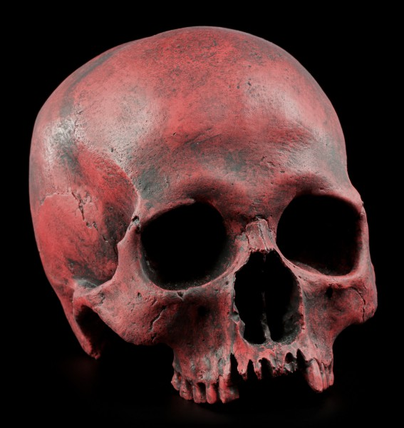 Female Replica Skull - Sagus Carmin Red - Limited Edition