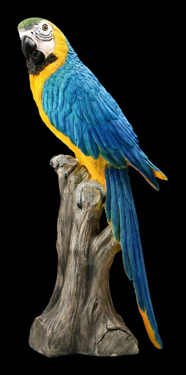 Gartenfigur Papagei - Blauer Ara