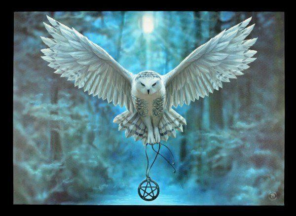 Große Leinwand mit Eule - Awake your Magic