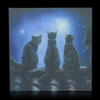 Mirror Box with Cats - Wish Upon a Star