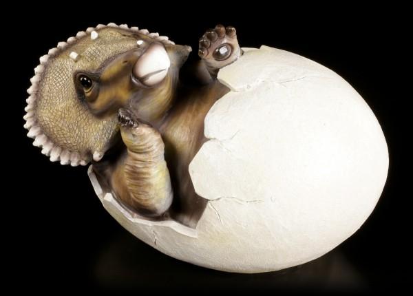 Gartenfigur Dinosaurier - Triceratops schlüpft