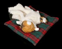 Katzen Figur schlafend auf Decke