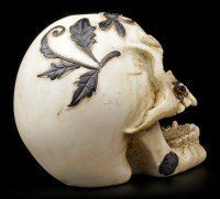 Skull with Dragonfly