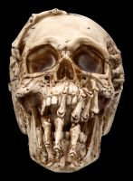 Totenkopf Figur - Breaking Out by James Ryman